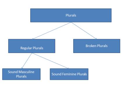 arabic plurals classification