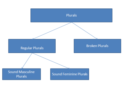 arabic plurals classification