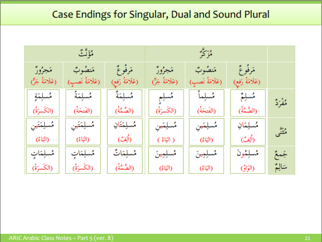 case endings for singular, dual and sound plurals